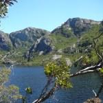 Tasmanien – Der Zweite Streich