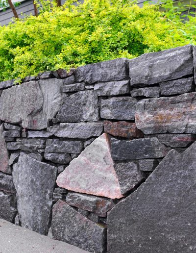 stone wall with a green plant on top