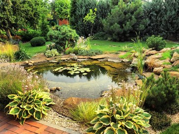 A garden with a fish pond
