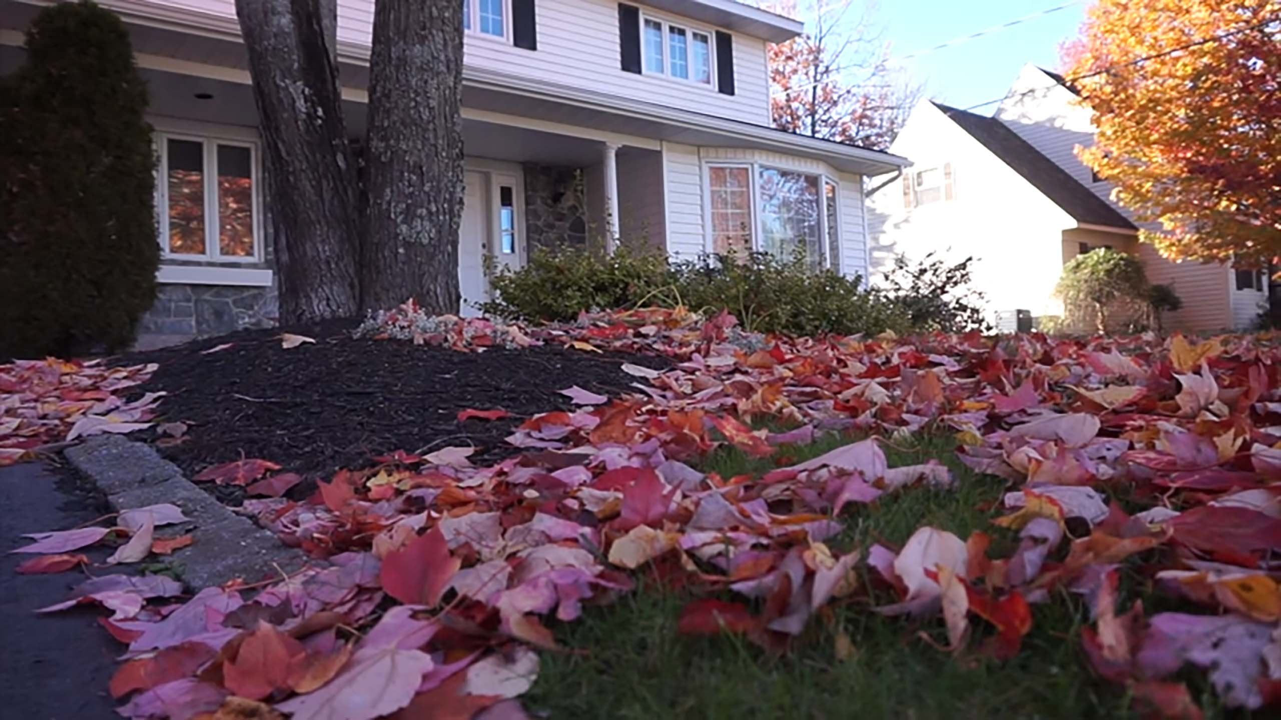 Fall Cleanup in Ridgefield CT A-Z Landscaping LLC