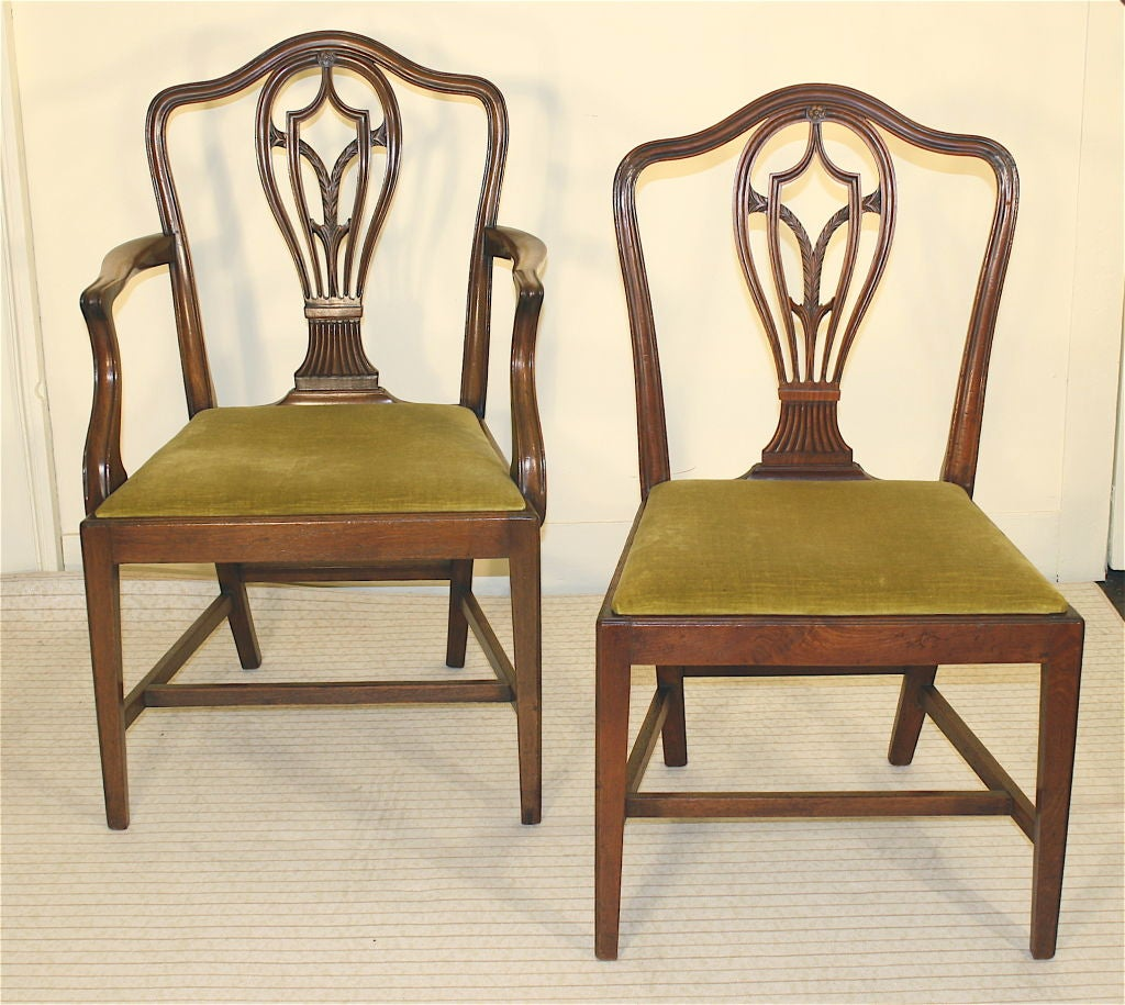 Hepplewhite Chair 8 Hepplewhite Carved Mahogany Dining Chairs At 1stdibs