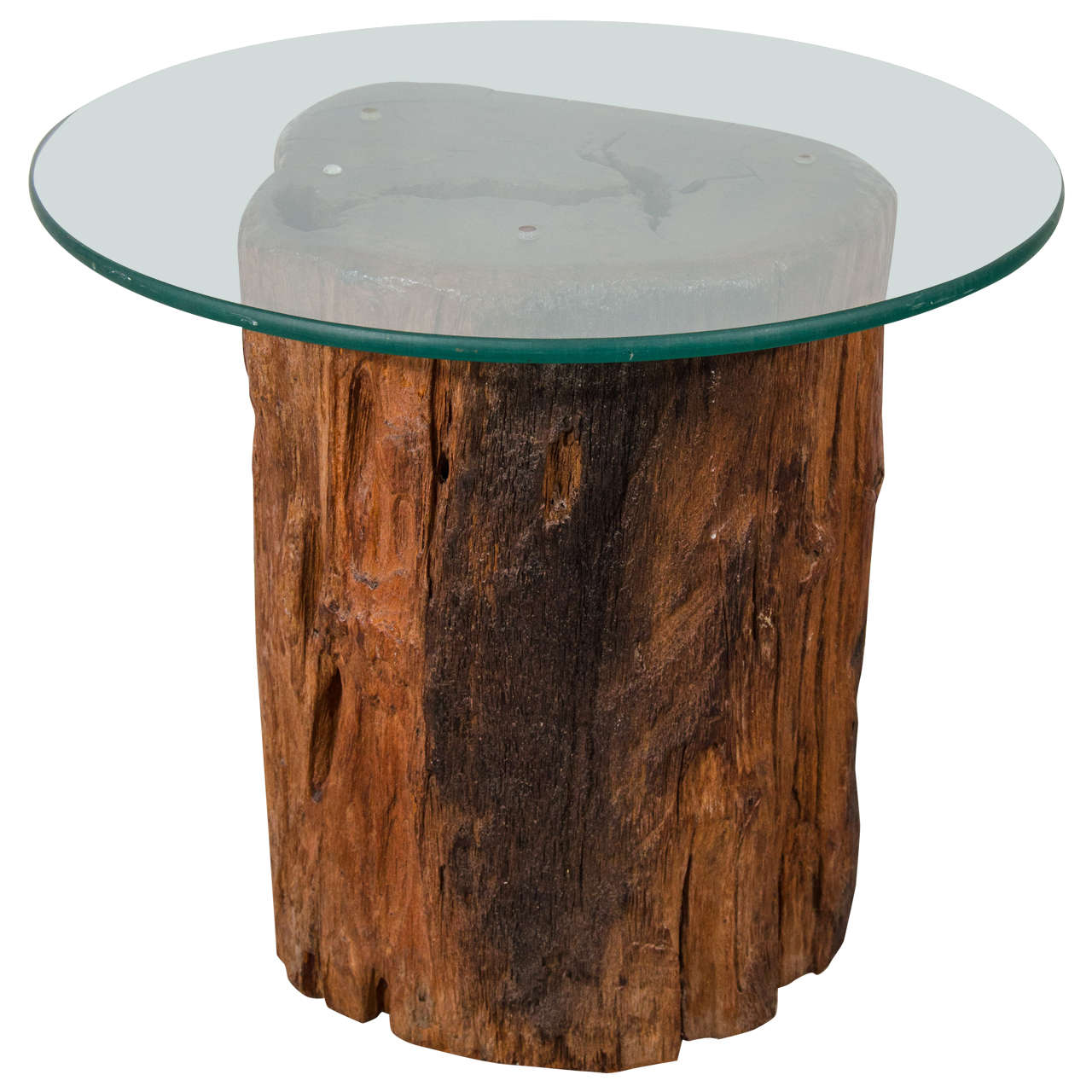 antique petrified tree trunk side table with glass top