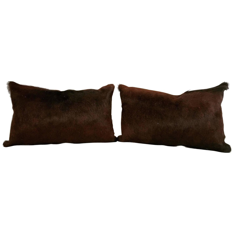 cowhide sofa throws stanton sofas dealer login dark brown brazilian pillows at 1stdibs