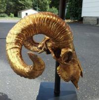 Gilded Ram Skull Lamps at 1stdibs