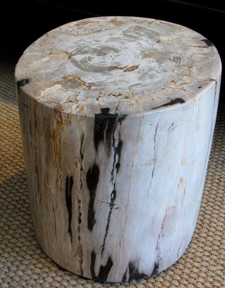 oval sofa atenas vs boston river sofascore petrified wood stump tables, set of 3 at 1stdibs