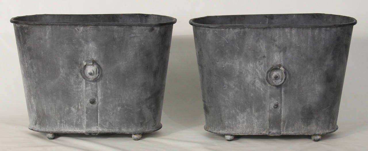 Pair Of Large French Zinc Oval Planters At 1stdibs