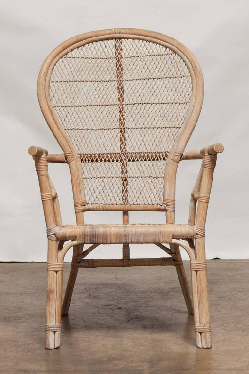 ficks reed chair retro office pair of rattan fan-back peacock chairs at 1stdibs
