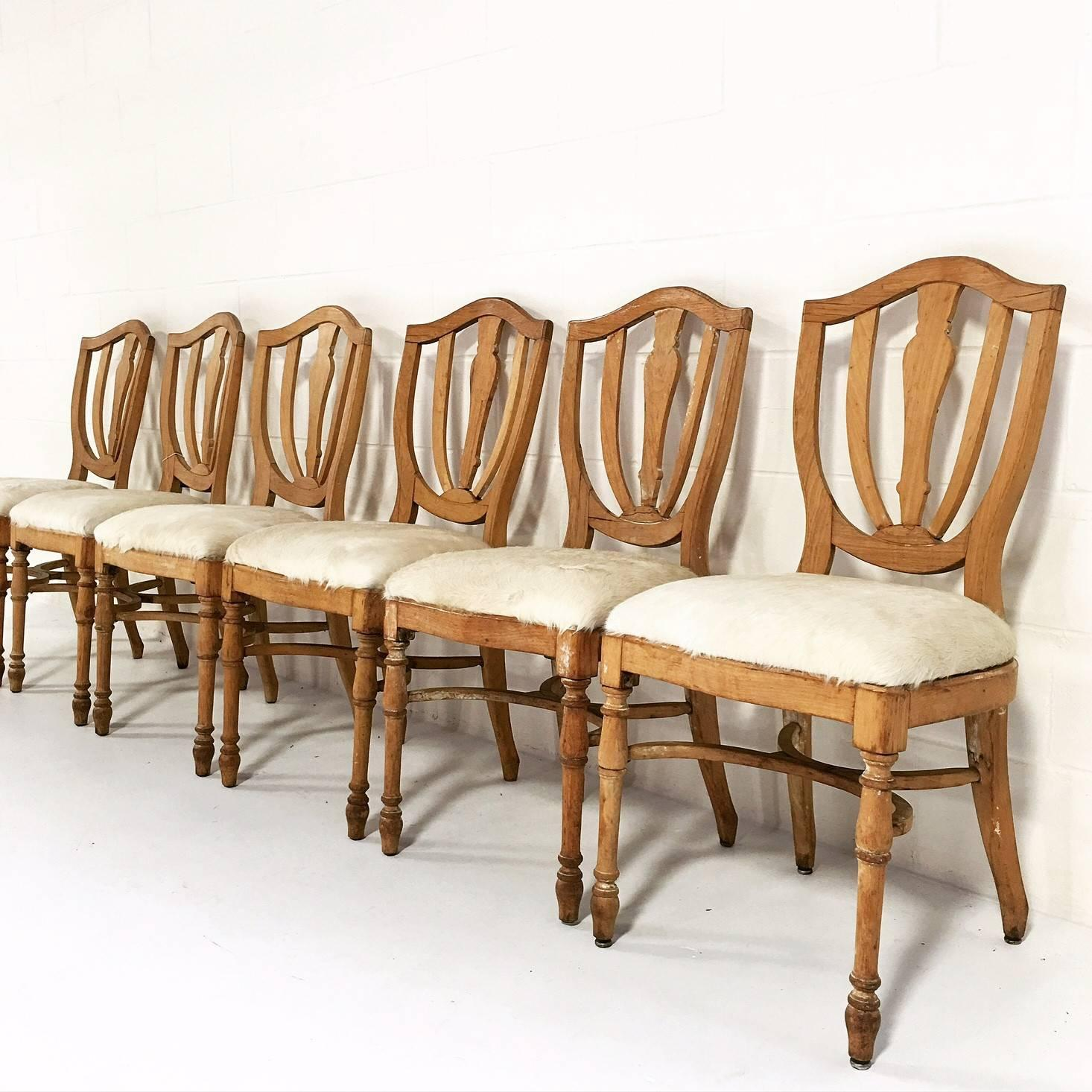 cowhide chairs nz job lot folding vintage maple dining in brazilian ivory