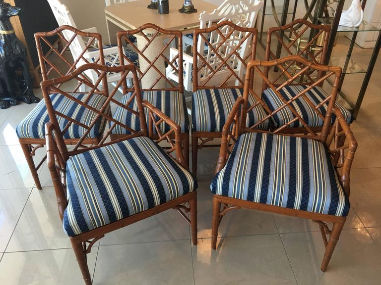 bamboo dining chair comfortable rocking faux chinese chippendale set of six chairs lovely includes two armchairs and