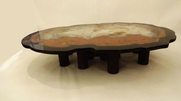 Petrified Wood Table Resin