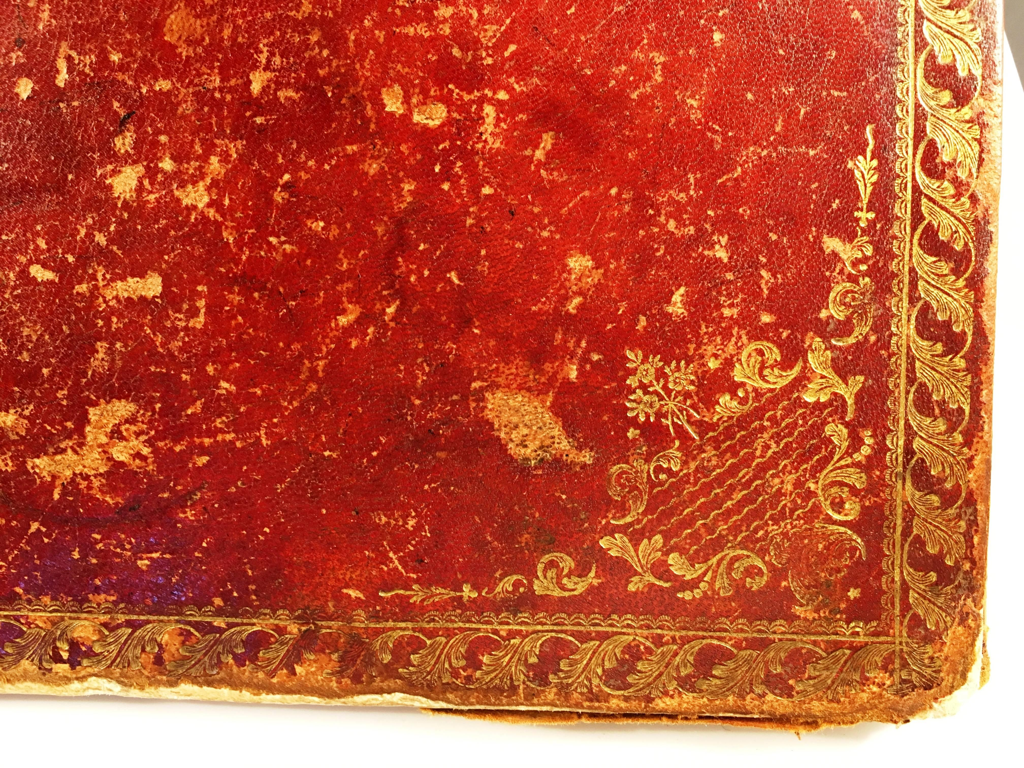 Large Red Leather Desk Blotter 18th Century For Sale at