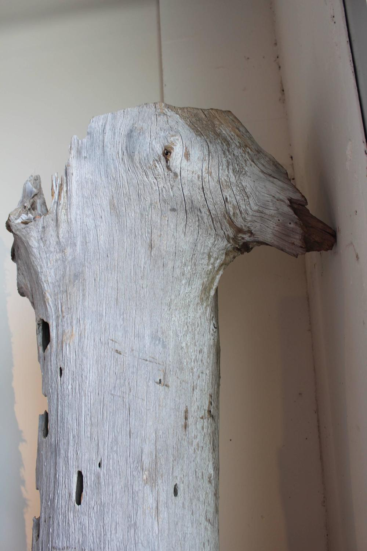 Organic Coastal Driftwood Trunk Sculpture For Sale At 1stdibs