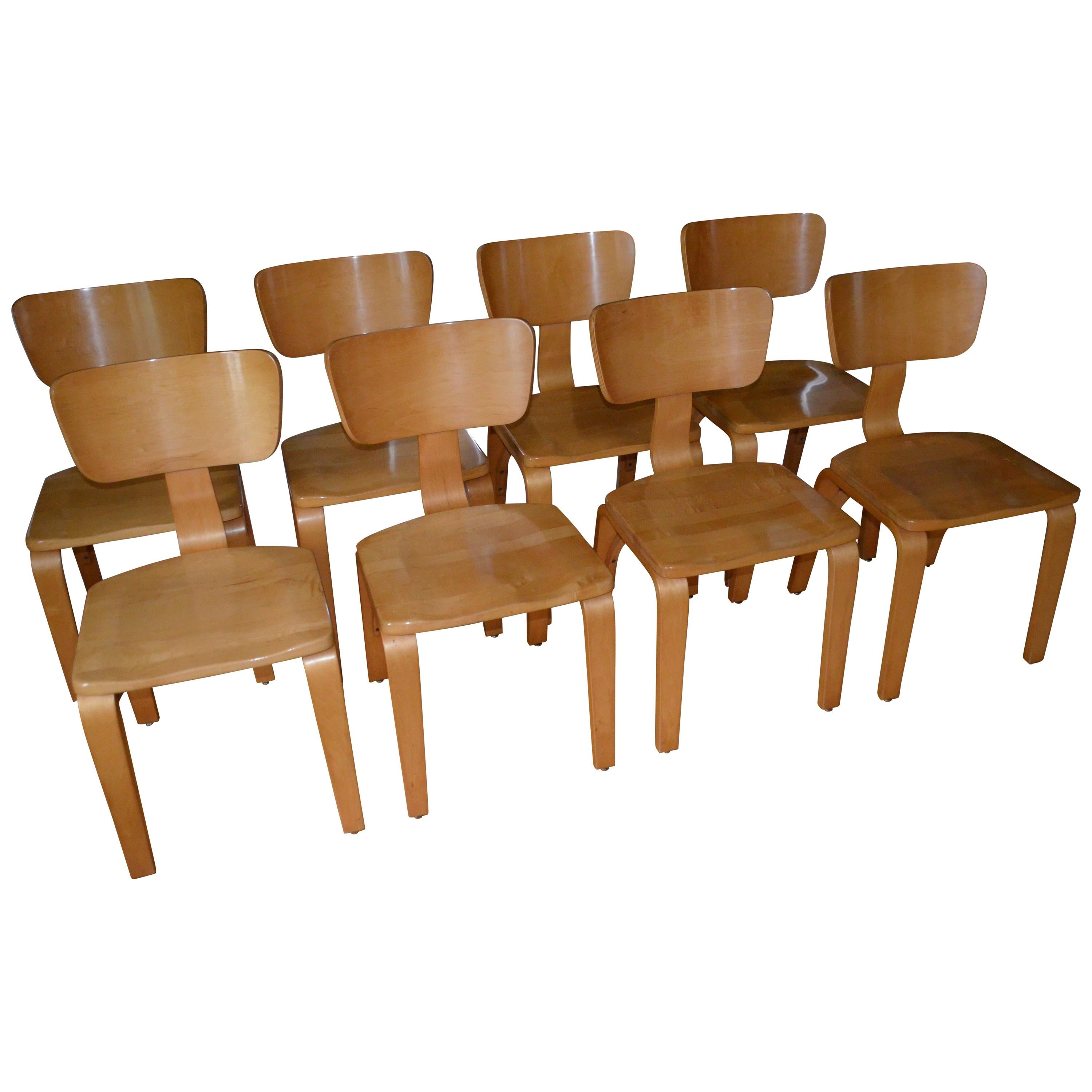 bentwood dining chair ergonomic with back support chairs by thonet of rock maple and set eight for sale