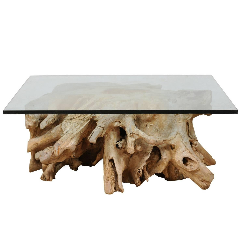 petulance كربون الوعظ tree root coffee table