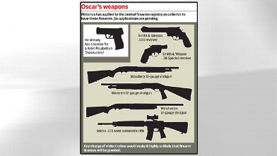PHOTO: A graphic illustrating the weapons Oscar Pistorius has applied for at the central firearms registry.