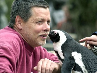 Picky Penguin Gets Her Man Back