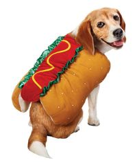 Hot Dog Picture | Halloween Costumes for Pets - ABC News