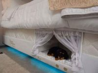 Brazilian Mattress Company Creates 'Bunk Beds' for You and ...