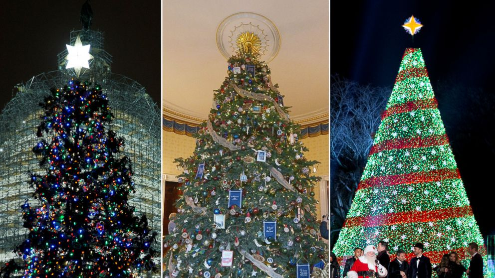 Image result for pictures of christmas trees in the white house