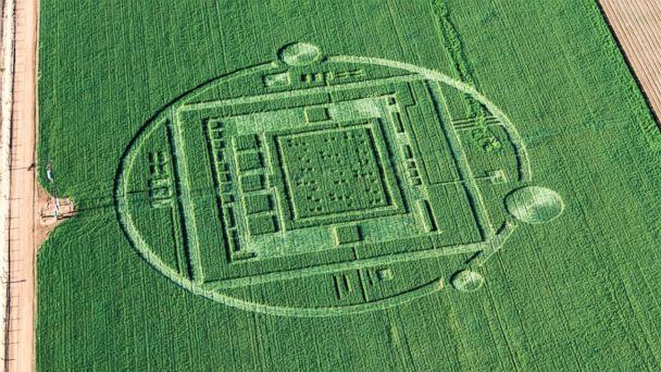 HT crop circle 03 jef 131231 16x9 608 California Crop Circle Sparks UFO Talk