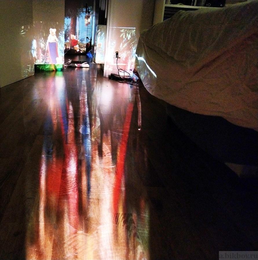 Indoor slide projection (GDR bears)