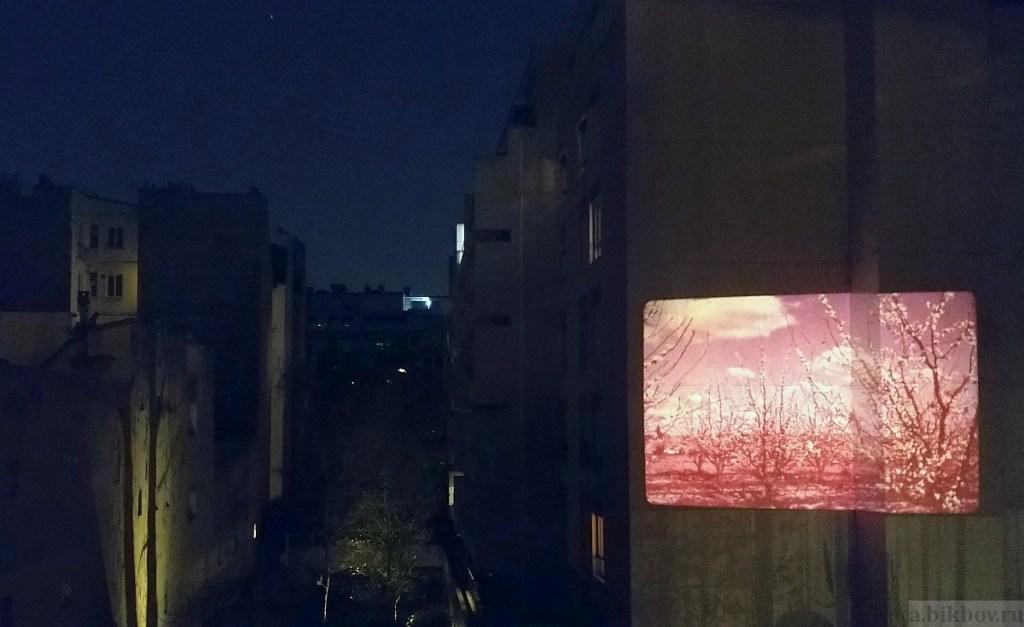 Paris COVID pleasures: night projection entertainment (nature)
