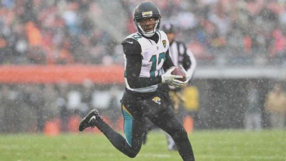 Image result for dede westbrook jags