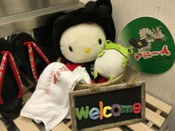 Gerobal Hostel Gifu Gero Spa Japan Book Now