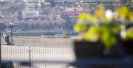 Happy Porto Hostel Porto Portugal Book Now