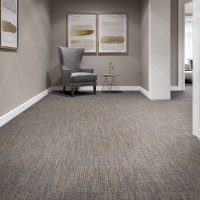 Camus | Modular | Carpet | Mannington Commercial