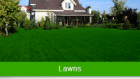 Green Carpet Lawn Care LLC in Somers, CT 06071 | Citysearch