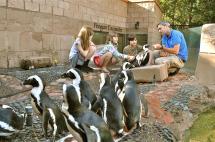 Long Island Aquarium Coupons In Riverhead Ny