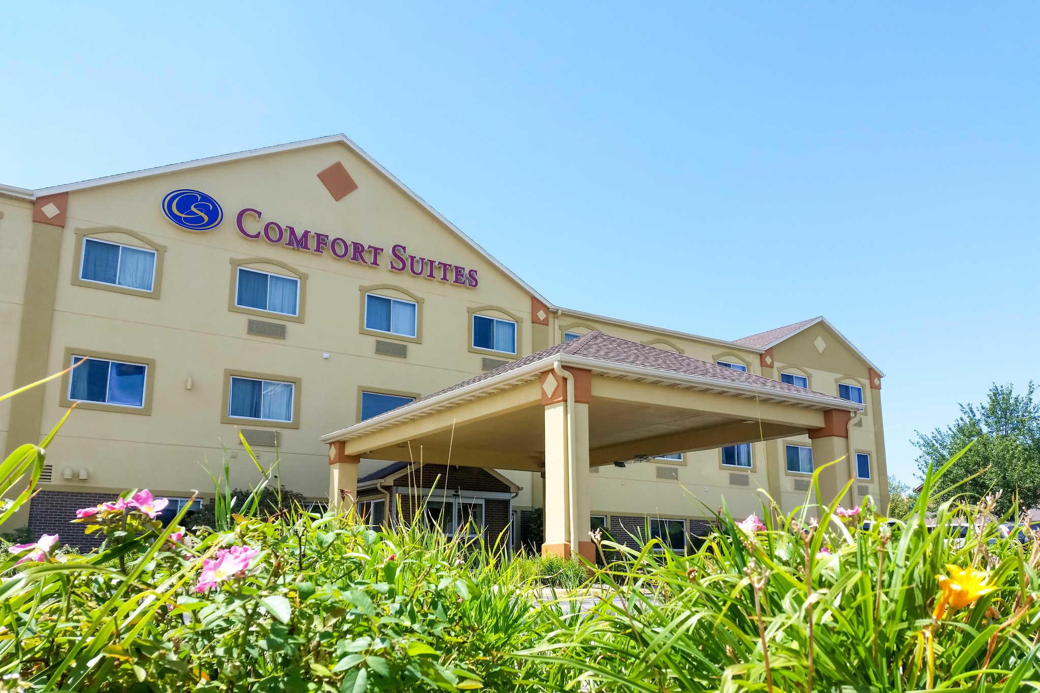 sofa for van singapore extra large pillows comfort suites 10503 bedford avenue omaha ne n49