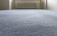 Carpet Connection, Panama City Florida (FL ...