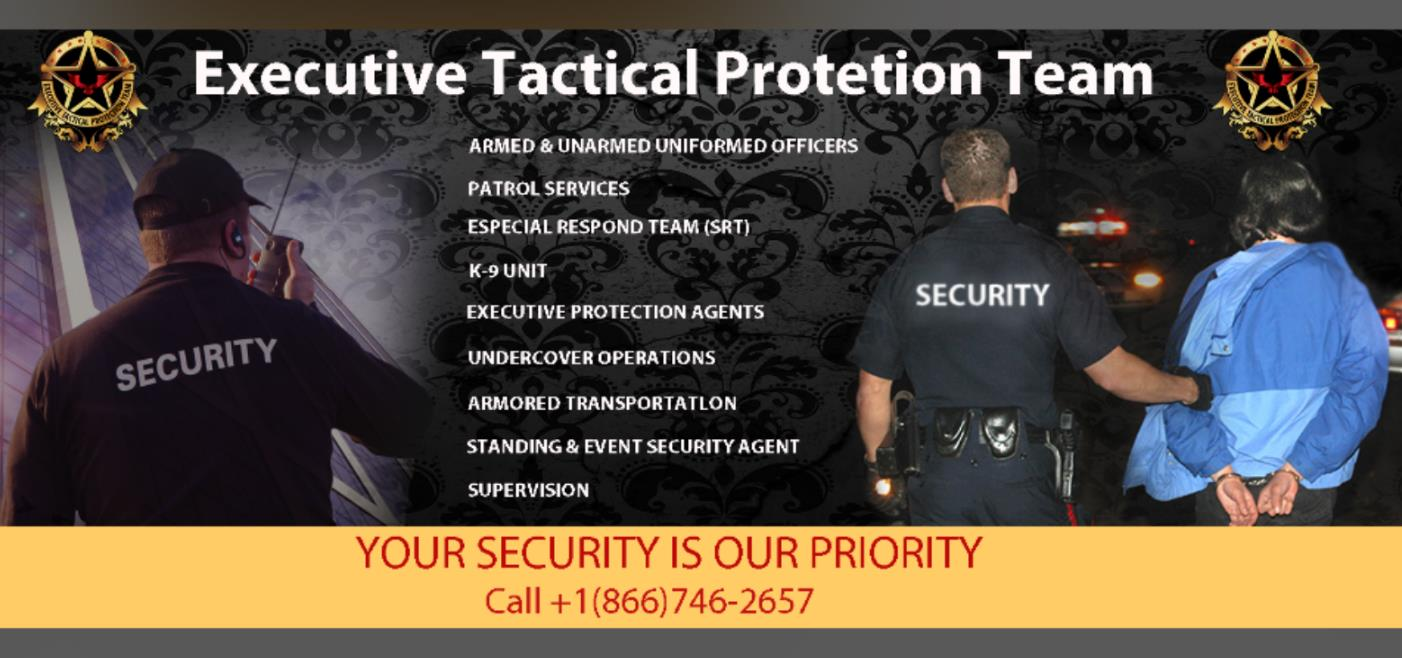 Team Executive Protection