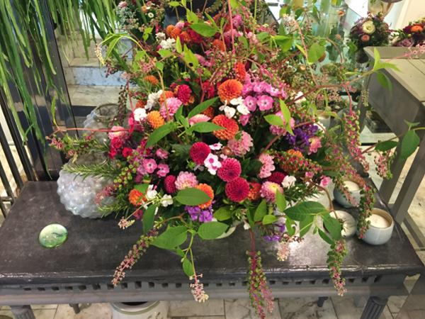 Blumen Und Pflanzen in Graz Ihre Suche ergab 66 Treffer