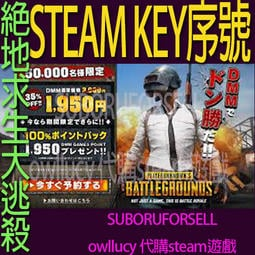 序號KEY 絕地求生 PUBG Steam 吃雞PLAYERUNKNOWN'S BATTLEGROUNDS - 露天拍賣