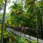 Gold Coast Hinterland Attractions Gold Coast Travel Guide Wotif Com