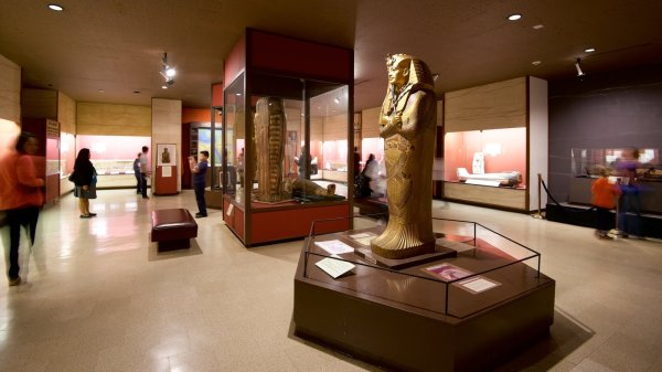 Rosicrucian Egyptian Museum View &