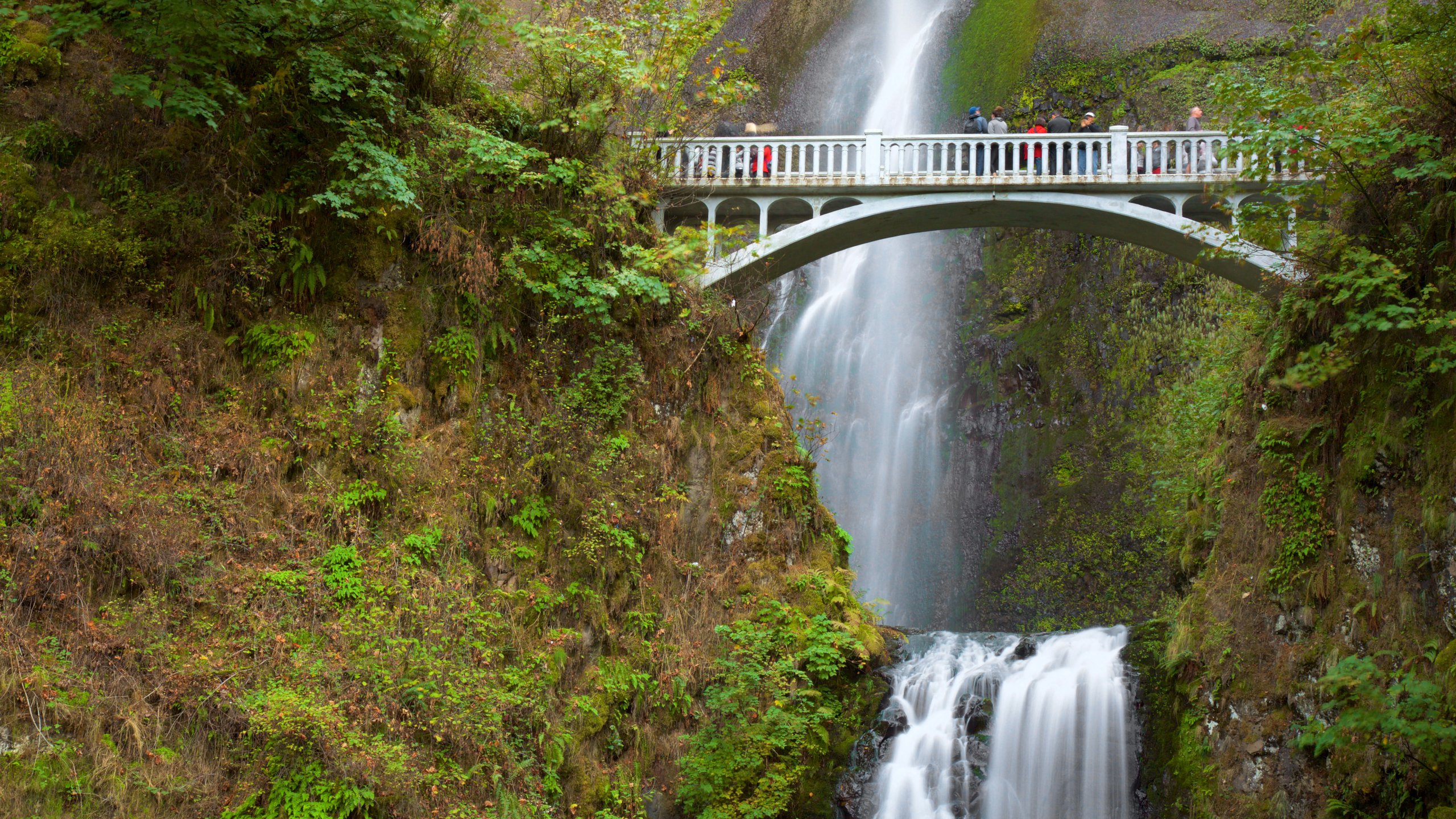 High Res Multnomah Falls Wallpaper 10 Best Hotels Closest To Multnomah Falls In Portland For