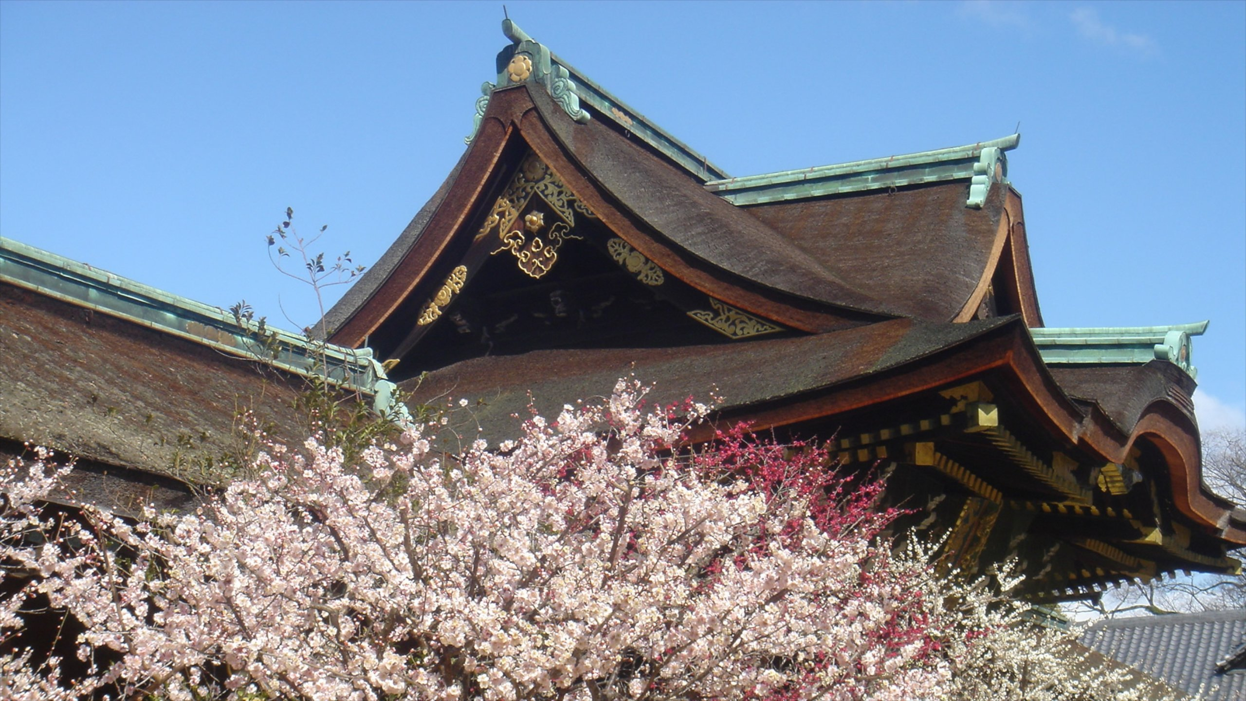 Top 10 Hotels In Nishijin Kyoto From 30 Night Save