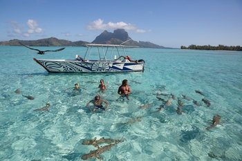 Things To Do In Bora Bora Top Attractions Activities