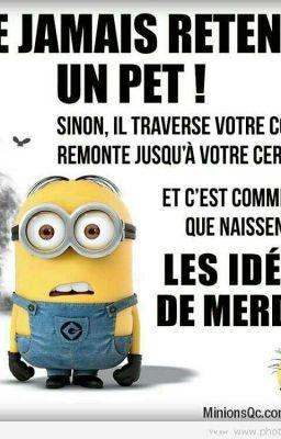 Histoire Drole Courte Pour Remonter Le Moral : histoire, drole, courte, remonter, moral, Drôle, Citations, Wattpad