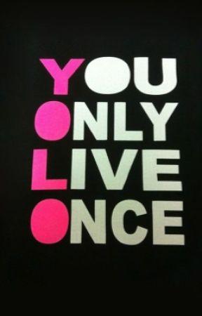 the y o l
