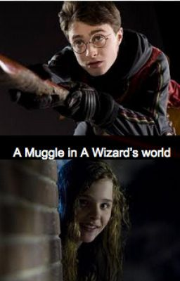 A Muggle in A Wizards world Harry Potter Fanfic  Hazel Nightshade  Wattpad