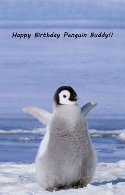HAPPY BIRTHDAY PENGUIN BUDDY Wattpad