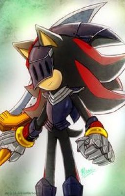 Worlds Apart  a Shadow the Hedgehog x Reader story