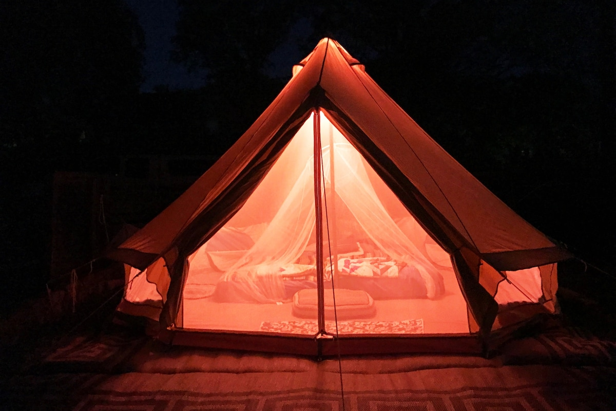 Top 6 Glamping Spots In Austin. Texas | Trip101