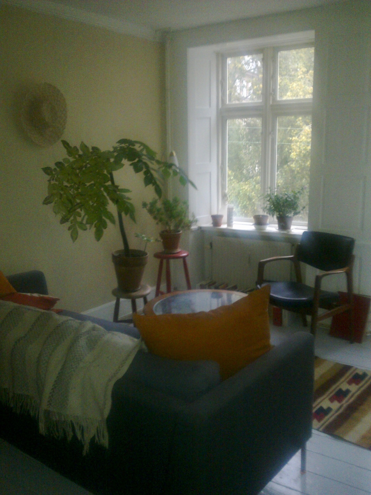 Cozy Central Appartment By The Lake Apartments For Rent