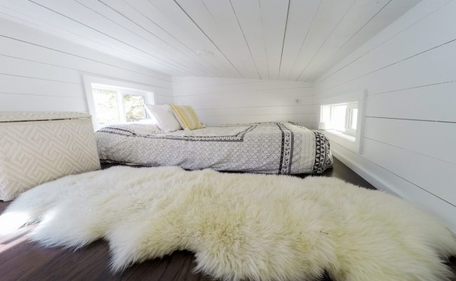 Cheap Tiny House Airbnb Near Tampa Florida Is The Ultimate